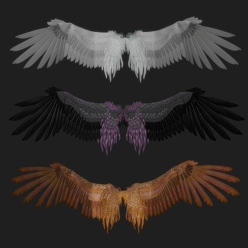 fantasy wing rigged 3d model rigged obj mtl fbx ma mb 1