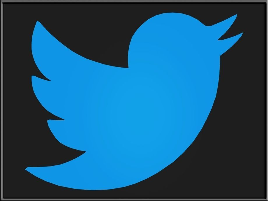 Twitter users younger, better educated than general public