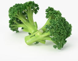 Realistic Broccoli 3D Model