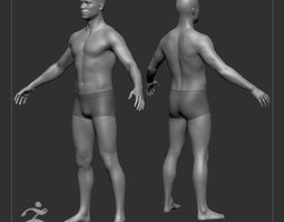 3D Average Male Body Basemesh