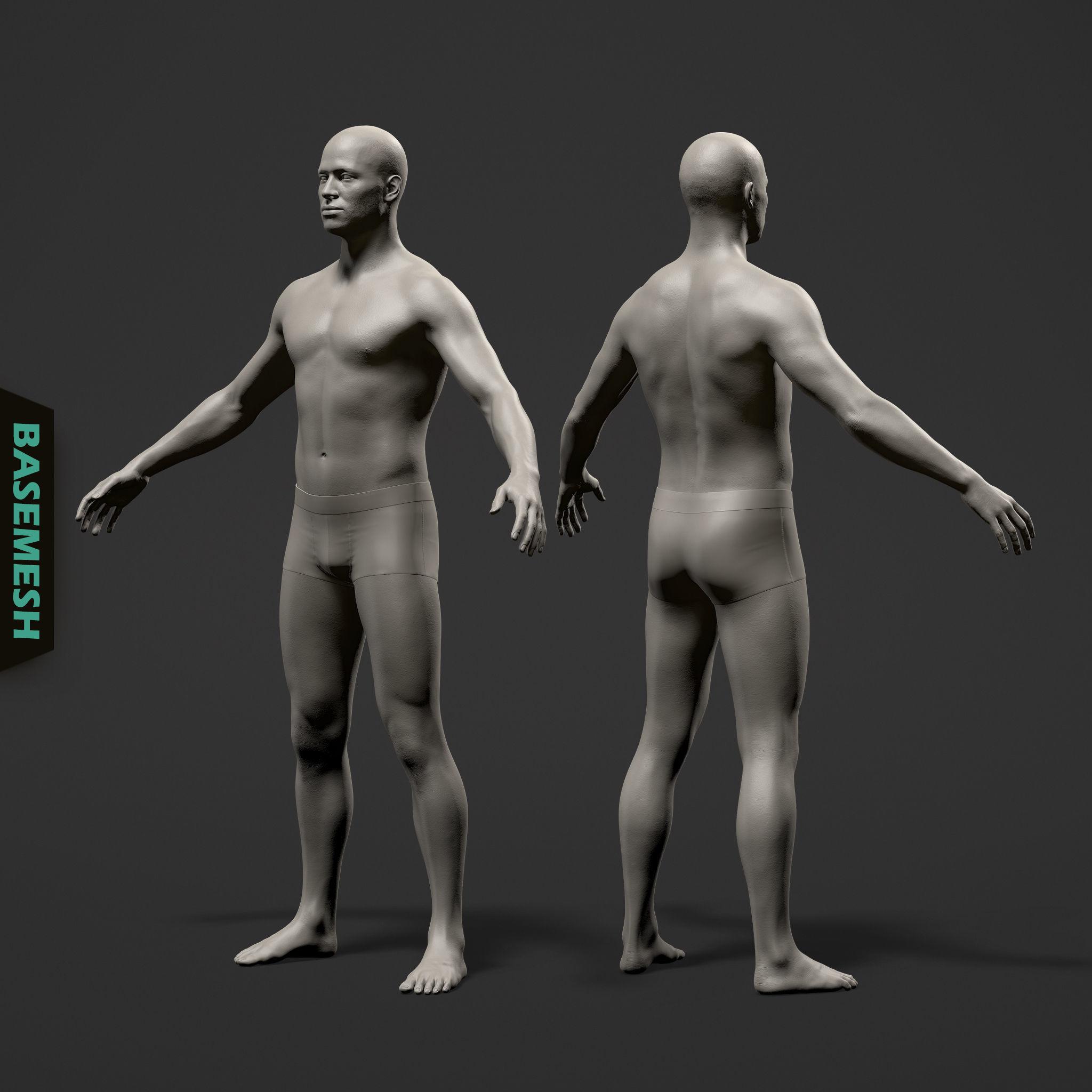 Average Male Body Basemesh