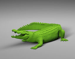 3D model Scanned Crocodile
