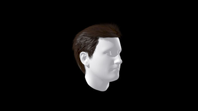 Male Hair Wig formal style3D model