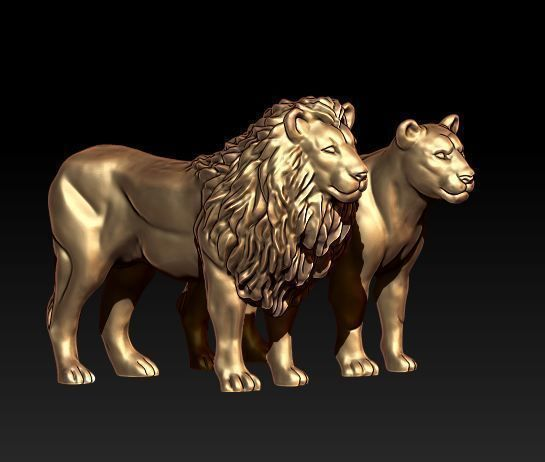 lion lioness 3d model obj mtl 1