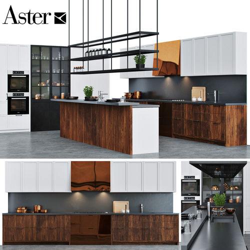 Aster Kitchen Factory 3D Model