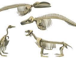 Aquatic 3D Skeletons