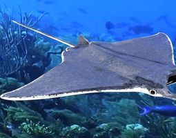 Manta Ray 3D asset low-poly