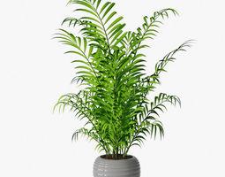palm 03 3D model