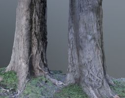 Tree trunk photoscanned 3D model low-poly
