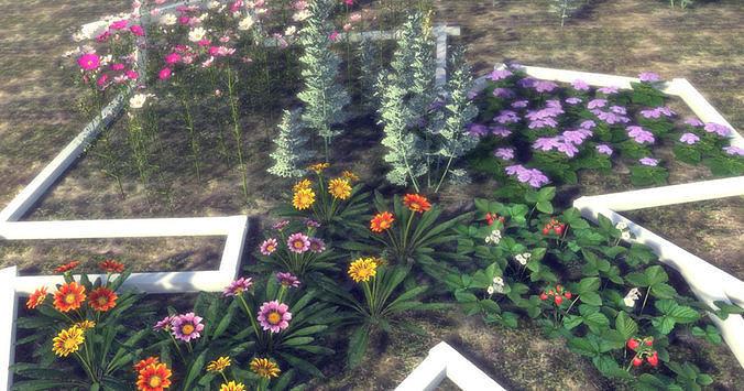 Garden Flowers and Herbs 1