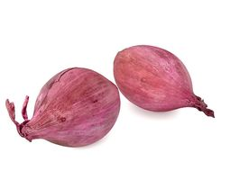 Red onions 3D