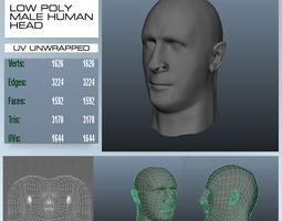 Low Poly Male Human Head 3D Model