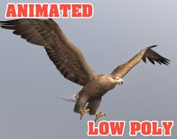 Golden Eagle 3D Model - Animated animated