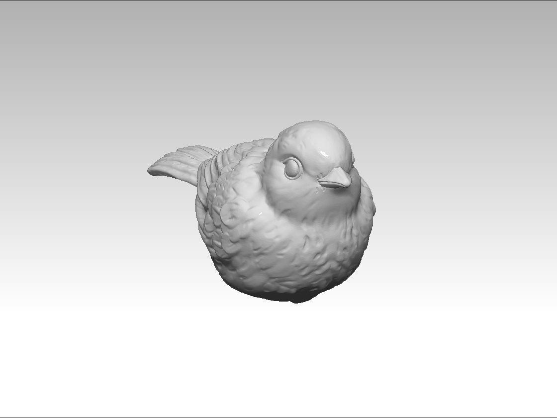 bird-Paridae