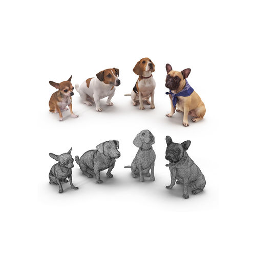 dog collection x4 3d model max obj mtl 3ds fbx stl skp 1