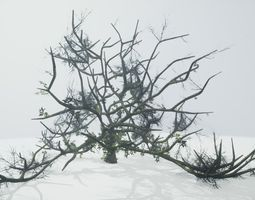 3D model Tree Die Old