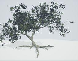 Tree Old 3D model