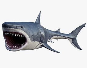 rigged 3D model Rigged Great White Shark