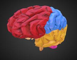 3D asset Low Polygon Art Medical Brain Color