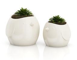 3d model two plants in bird pots