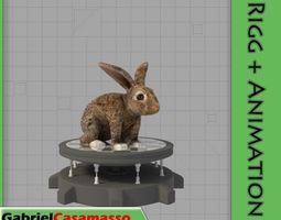 3D model animated low-poly Rabbit