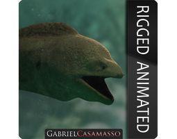 3D asset Giant Moray Eel - Gymnothorax javanicus