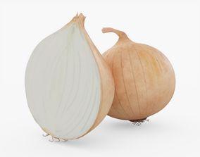 3D model Onion Vegetable