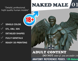 Nake Male Angel 1803081 3D print model