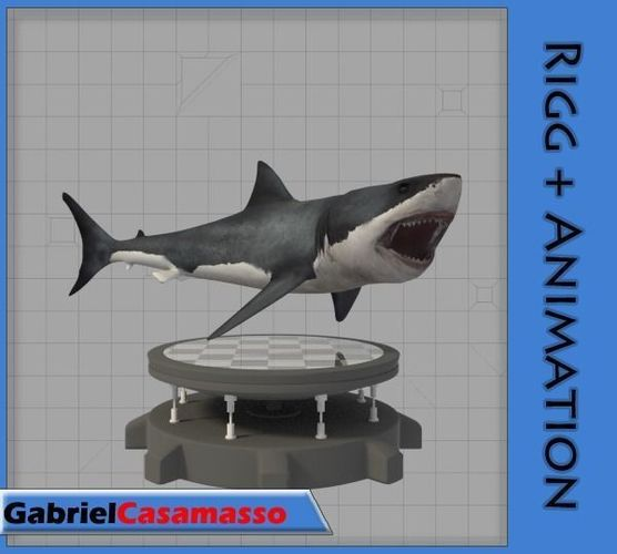 great white shark 3d model fbx blend 1