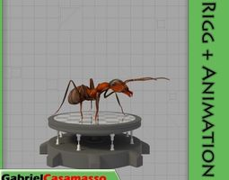 3D Field Ant