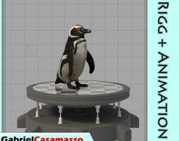 3D asset Magellanic Penguin