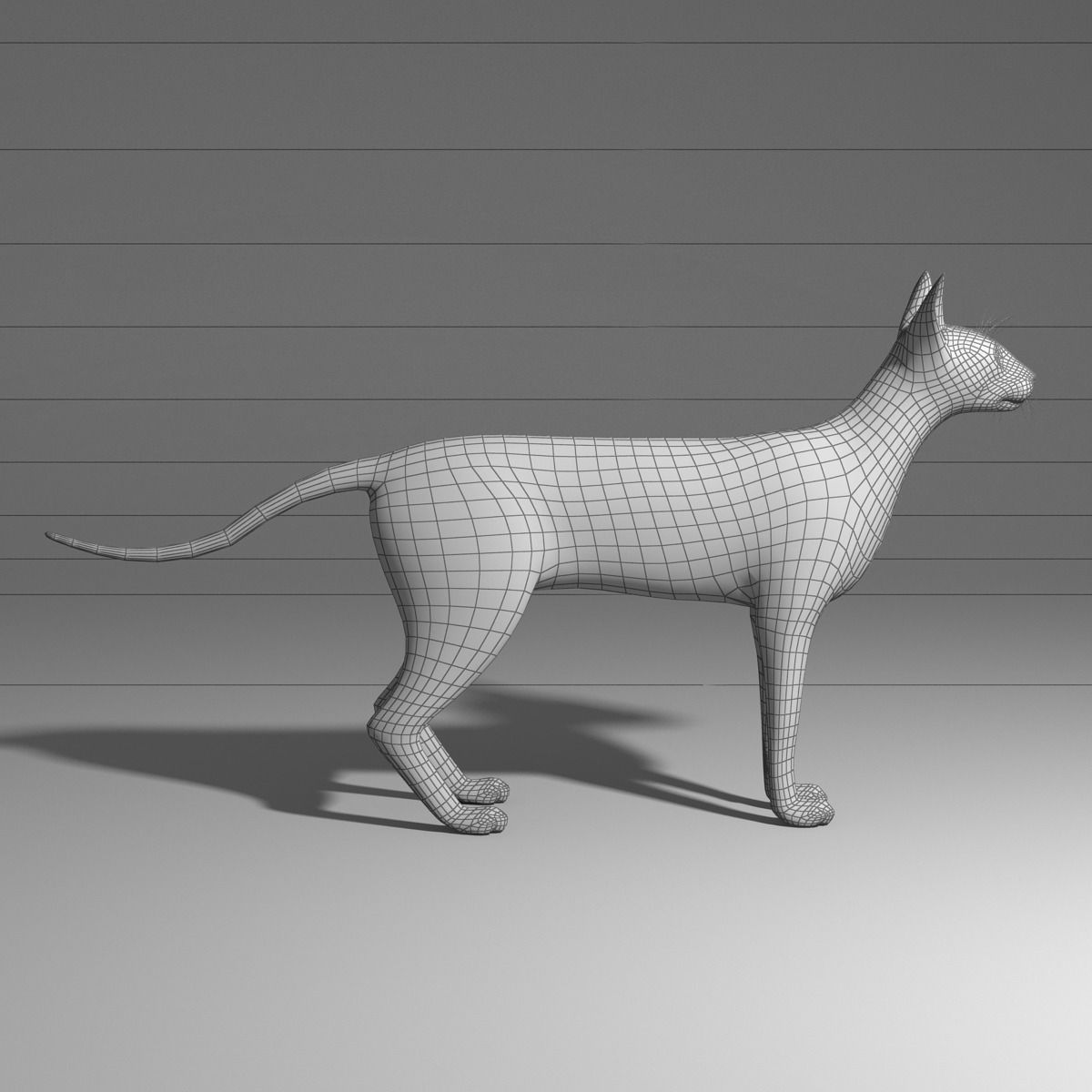 siamese cat 3d model - photo #33