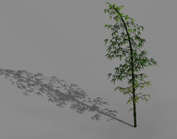 3D model Dazhu Feng - black knot bamboo 02