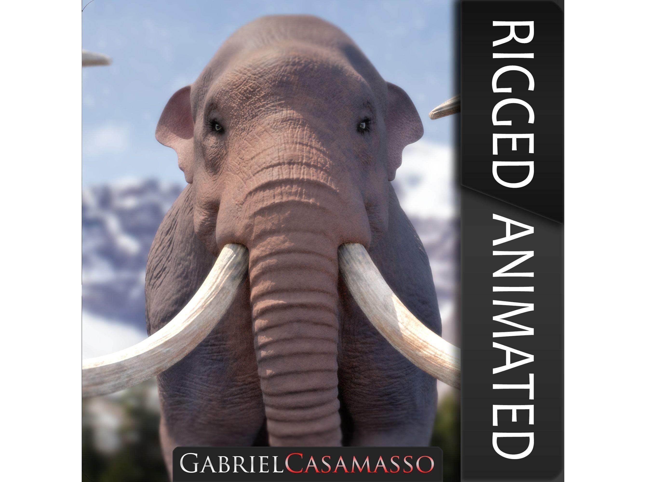 Columbian Mammoth - Mammuthus Columbi