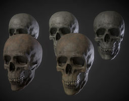3D model Low poly Human Skull and Jaw Collection 1 - Game