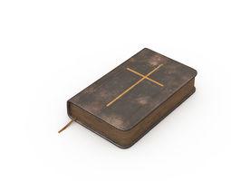 3D model Vintage Bible