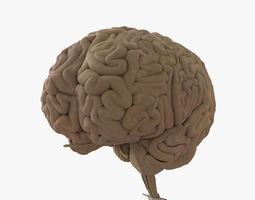 3D games Human Brain