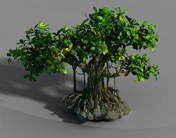 Small bamboo peak - big banyan tree 01 3D model