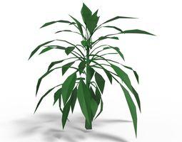 plant tree Plant 3D