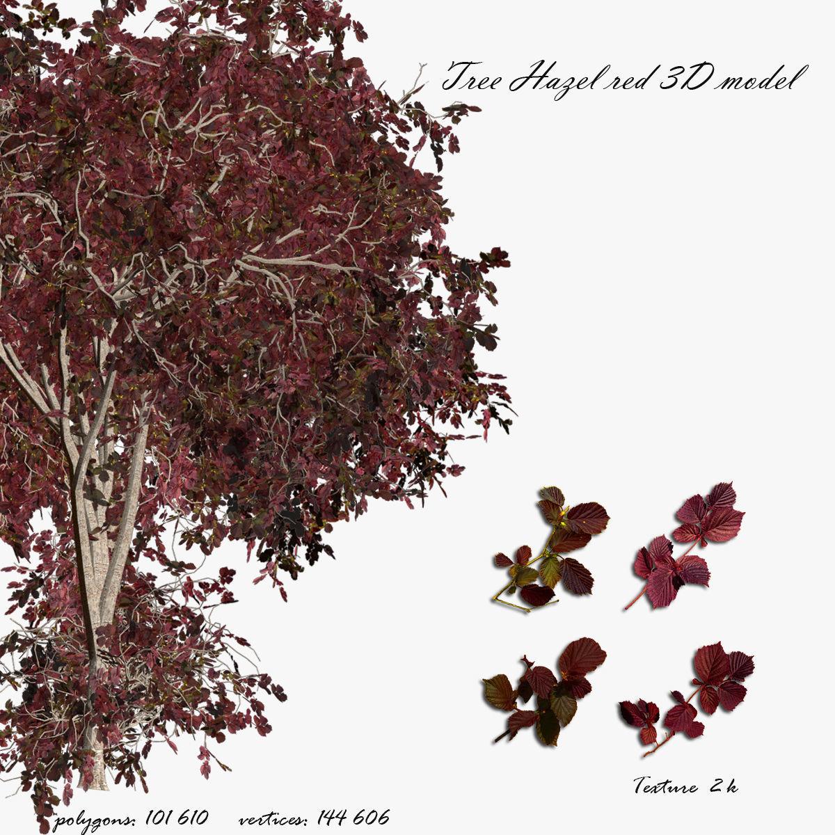 Tree Hazel red 01
