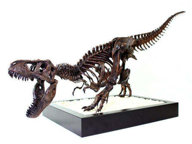 T-Rex Skeleton - Leo Burton Mount