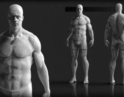 Male Human Anatomy Base Mesh Package 3D Model