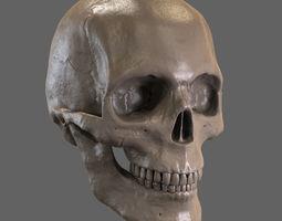 cranium 3D Skull STL