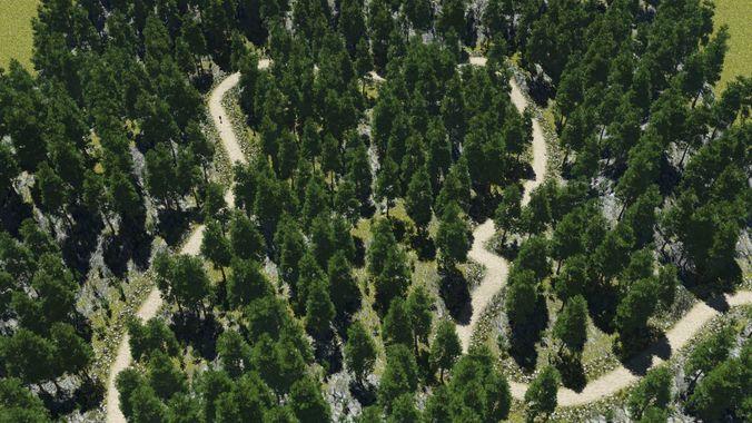 rough path in terragen 3d model obj tgo 1