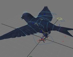 Swallow Rigged 3D