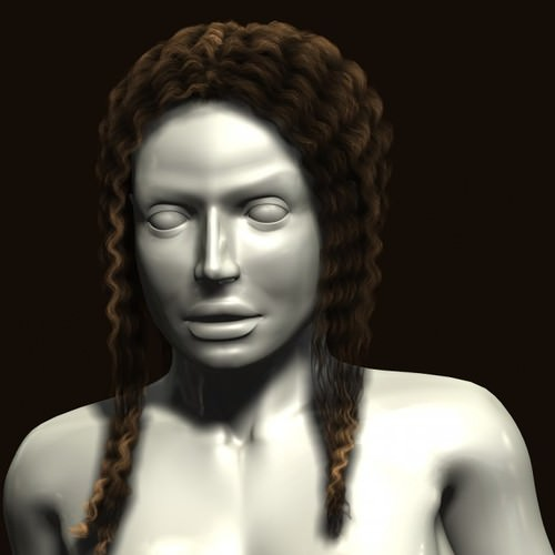 Hairstyles on mannequin 3D Model MAX OBJ 3DS FBX  CGTrader.com