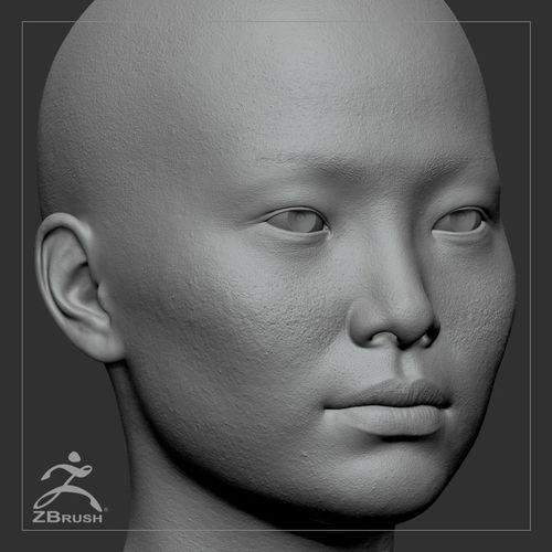 Remove Dog Hair From Car >> 3D Average Asian Female Head Basemesh   CGTrader
