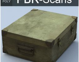 3D model Trunk Middle Poly
