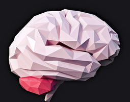 Brain Low Poly v2 3D model