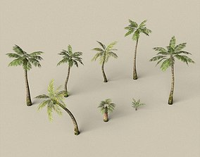 3D model Game Ready Palm Tree Pack
